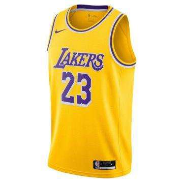 Los Angeles Lakers Lebron James Icon